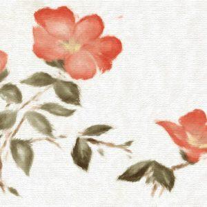 L'Eau Honshu