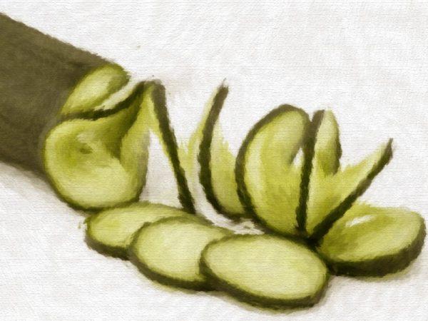 Huile végétale de Pépins de Concombre